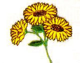 JKM 3 Sunflowers on Stem Applique (Stick On)