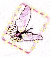 JKM Lavender Butterfly in Frame Applique (Stick On)