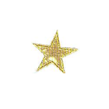 JKM Gold Star with Metallic Middle Applique Stick On