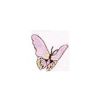 JKM Lavender Butterfly Applique Iron On