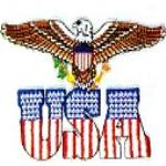 JKM Eagle with Flag USA Letters Applique (Iron On)