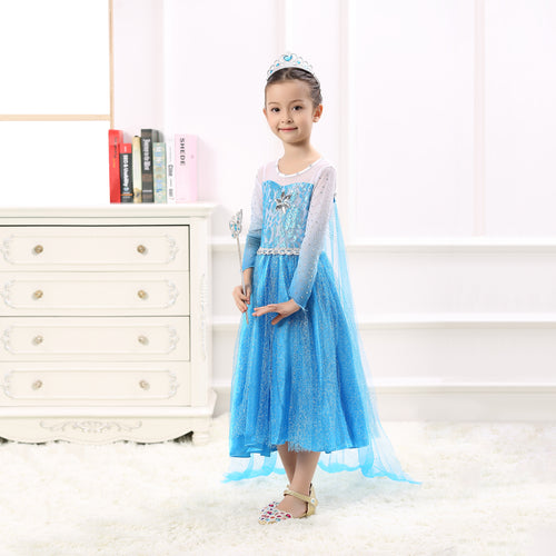 Princess Costume - Icy Blue Gown Skirt Elsa Dress with Gauze Veil