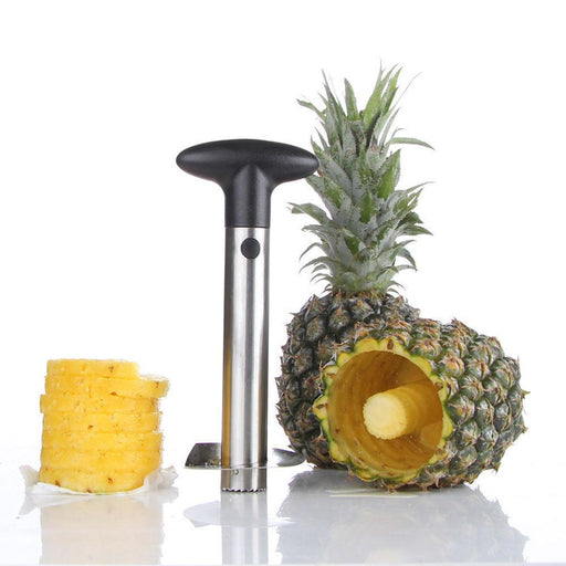 Pineapple Peeler Price