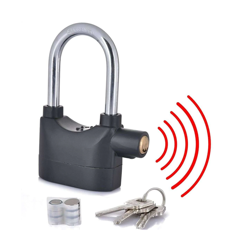 Anti Theft Alarm Lock Price