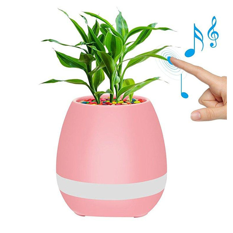 Smart Music Flower Pot Price