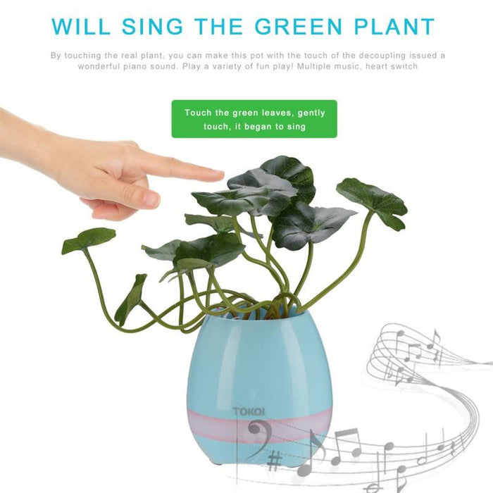 Music Flower Pot Price