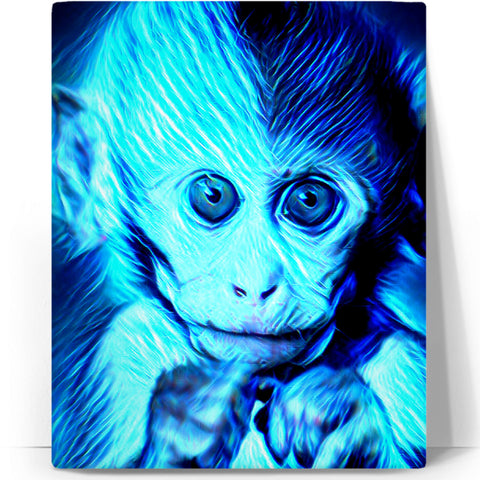 Baby Monkey  Canva