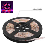 Waterproof 5050 Flexible LED Grow Strip Light Red and Blue 5:1 Aquarium Greenhouse Hydroponic Plant Growing Tape Lamp 60led/m 1M/2M/3M/4M/5M