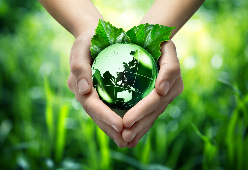 Hands holding green earth to represent environmental sustainability