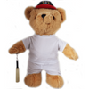 Cricket Teddy Bear (plain) - Golf Gifts UK - Golf wrapped up