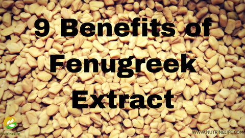 9 Attractive Benefits of Fenugreek