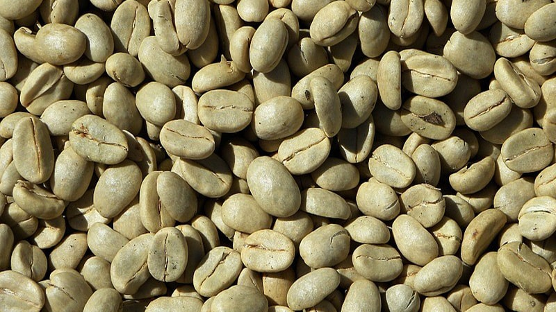 All The Benefits Of Green Coffee Beans That Many People Don T Know