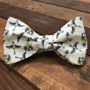 Blue Bill in Cream Bow Tie