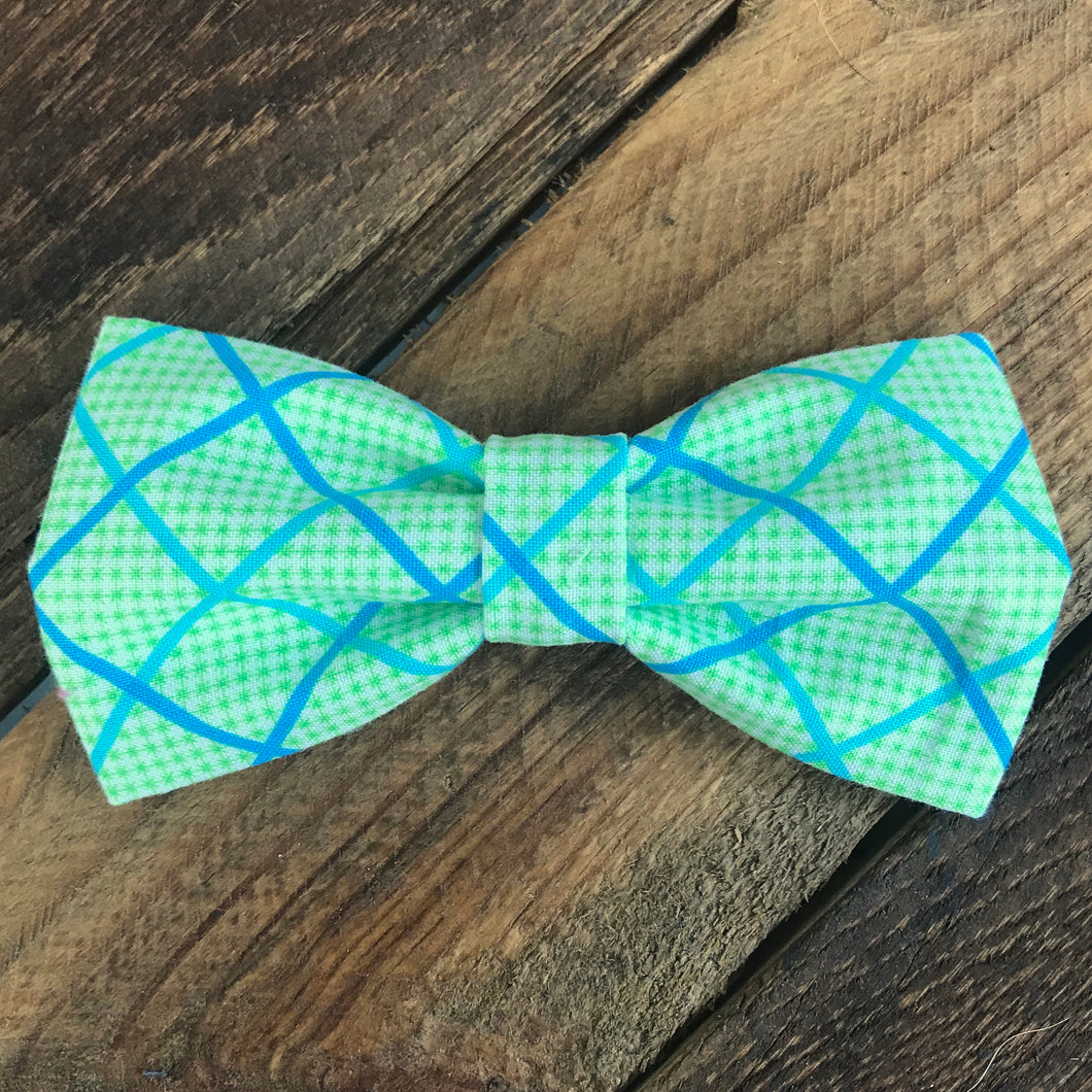 Medium Lime and Teal PupTie