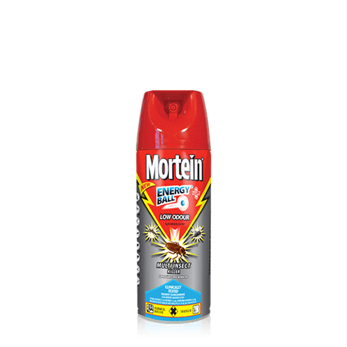 Target Mortein Insect Killer Spray Energy Ball 300ml - Buy Groceries Online