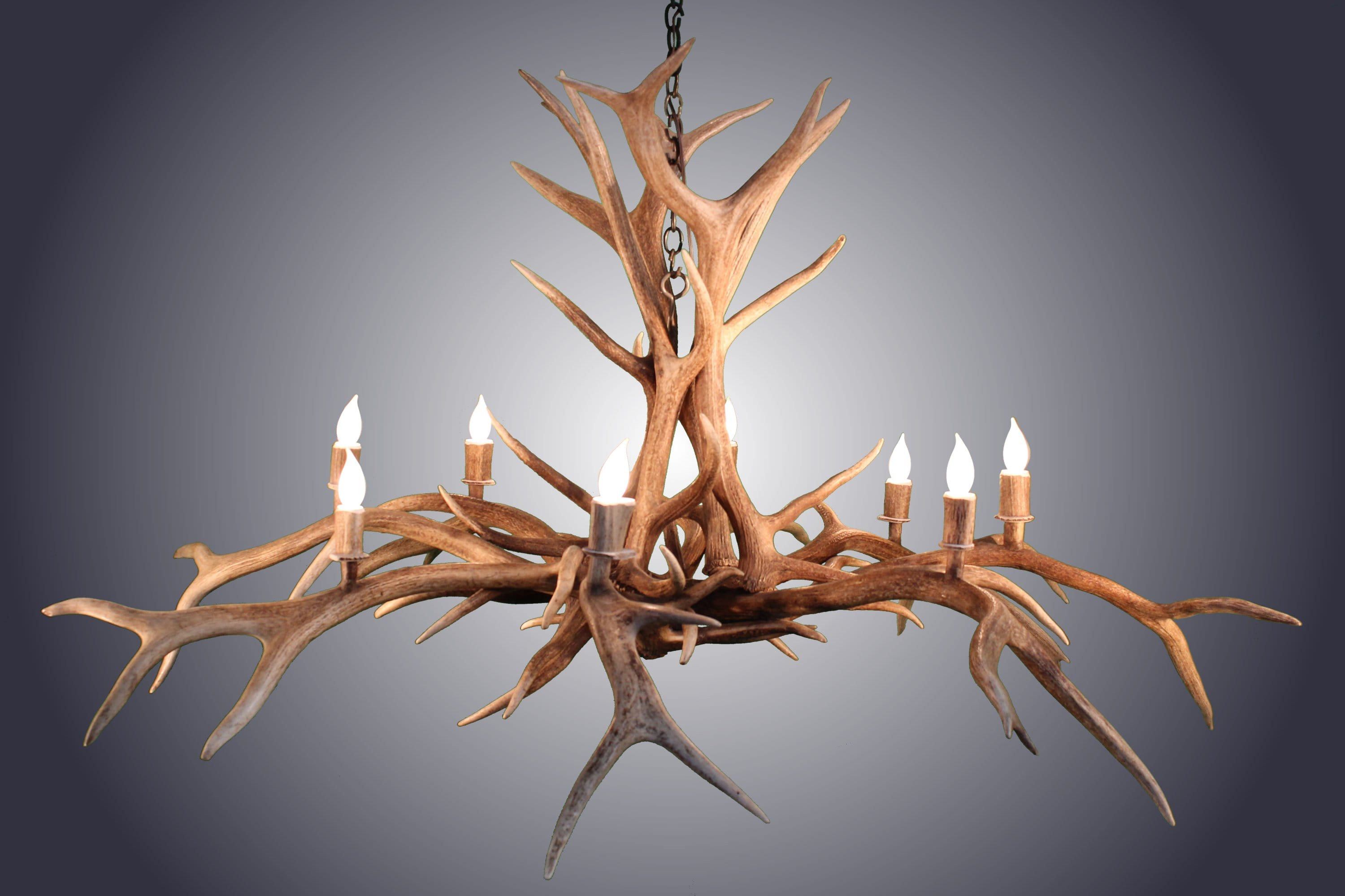 8 Light Inverted Elk Spider Antler Chandelier (AWC-16) - Antlerworx