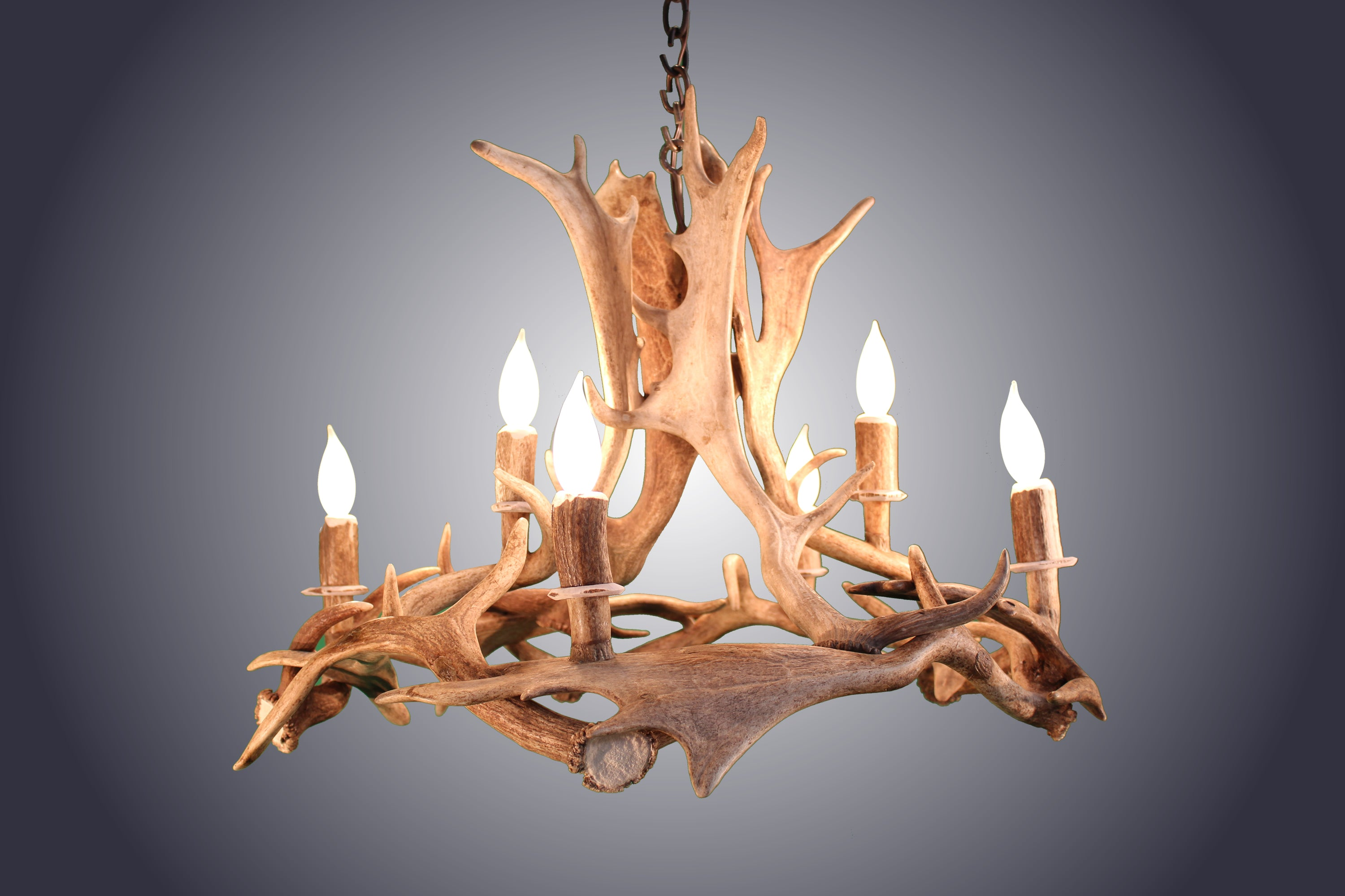 6 Light Fallow Ring Antler Chandelier (AWC-89) - Antlerworx