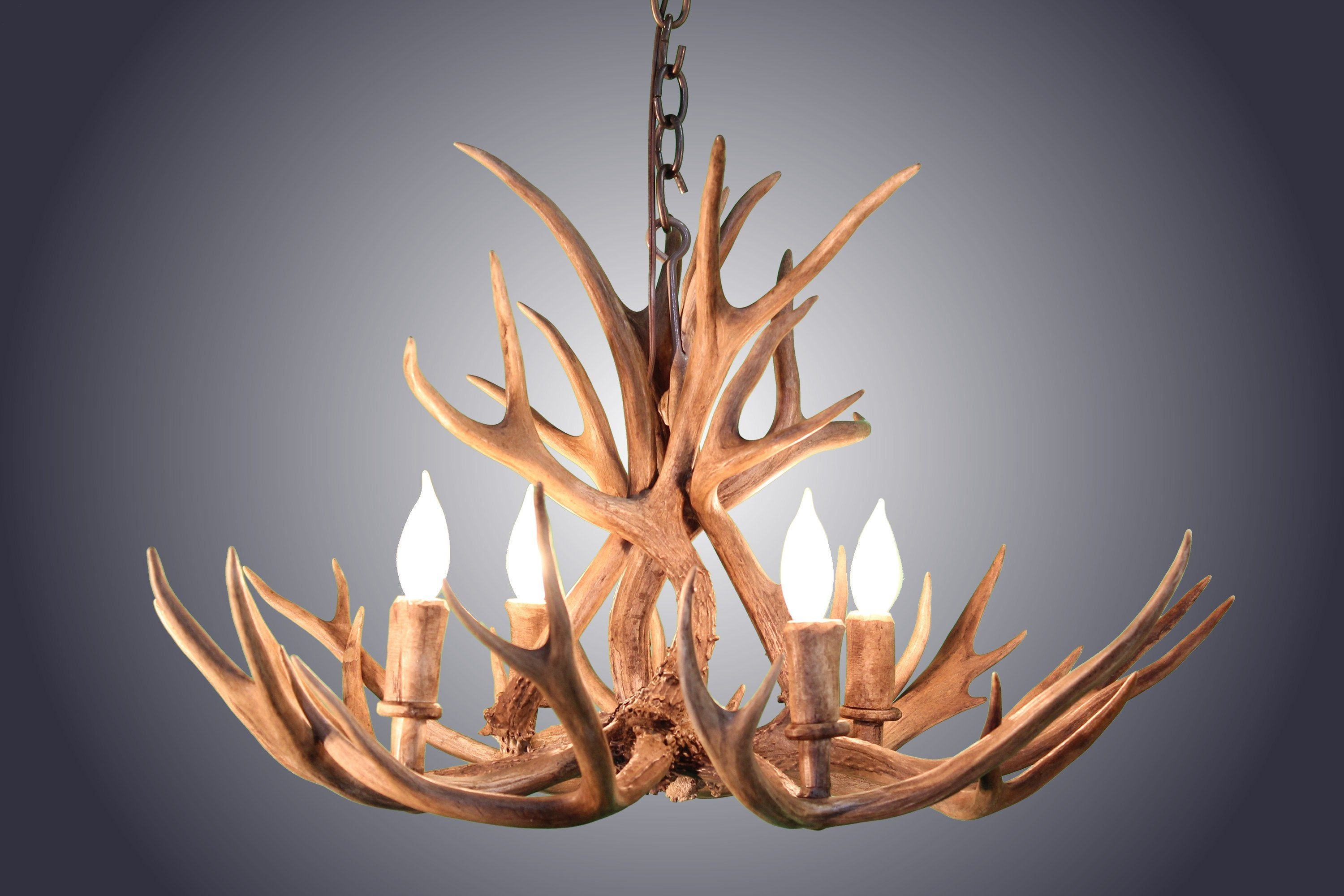 4 light mule deer antler chandelier antlerworx 4 light mule deer antler chandelier awc 9 antlerworx aloadofball Images