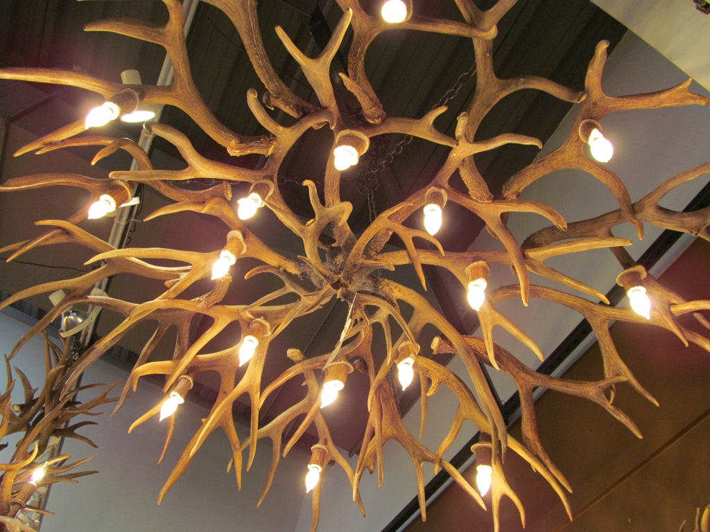 16 Light Mule Deer/ White Tail Mother In-Law Antler Chandelier (AWC-46)