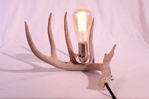The Simple Lamp - Antlerworx