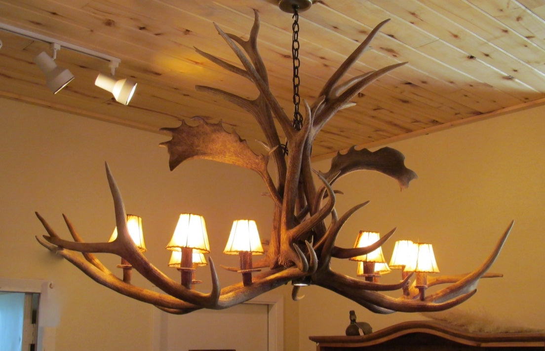 8 Light Elk/Fallow Elongated Antler Chandelier (AWC-21) - Antlerworx