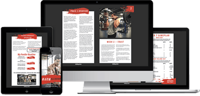 #ARMageddon 1.0 - 12 Week ARM Training Program E-Book