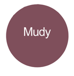 Load image into Gallery viewer, Mudy Soft Matte Liquid Lipstick - Jos Cosmetics London
