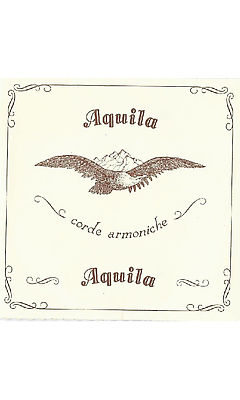 Aquila 140D Wound Lute String