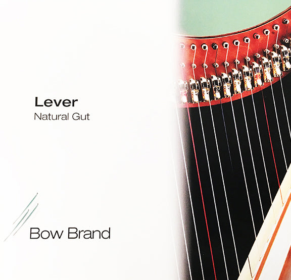 1st Octave D - Lever Harp Gut String by Bow Brand