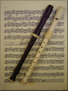 Cranmore Sopranino Recorder after Denner (a=415)