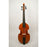 Lu-Mi Master 6-String Bass Viol after Meares