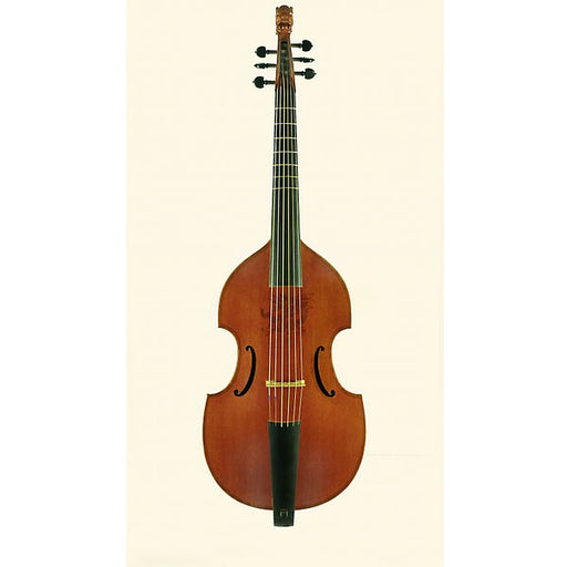 Lu-Mi Consort 6-String Bass Viol after Jaye