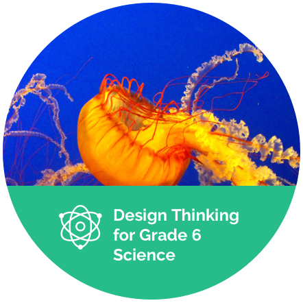 Design Thinking for Grade 6 Science