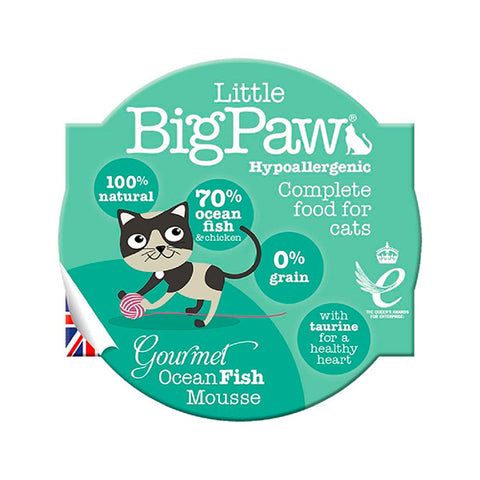 little big paw gato fish pescado