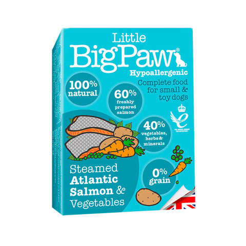 Little Bigpaw salmon perro dog