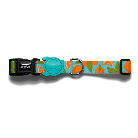 zee.dog florida collar