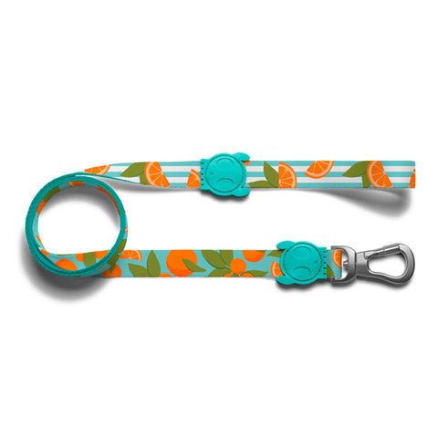 zee.dog florida leash