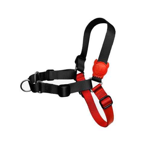 Zee.Dog Fatboy Soft-Walk Harness