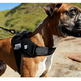 Zee.Dog Gotham FlyHarness arnes