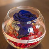 Bloom de Fleur Forever Roses Single Rose - Forever Midnight Blue
