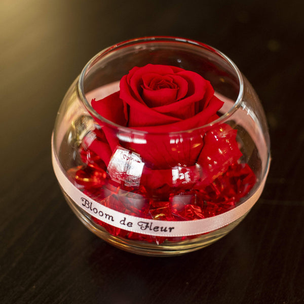 Bloom de Fleur Forever Roses Single Rose - Forever Red