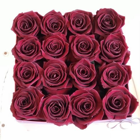 "Bloom de Fleur Forever Roses Small Square -  16 Forever roses ""Chocolate"""