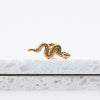 Snake Labret Helix Piercing Stud Cute Ear Piercing Jewelry