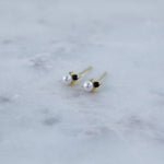 Black Tie Affair Earrings (Pair)