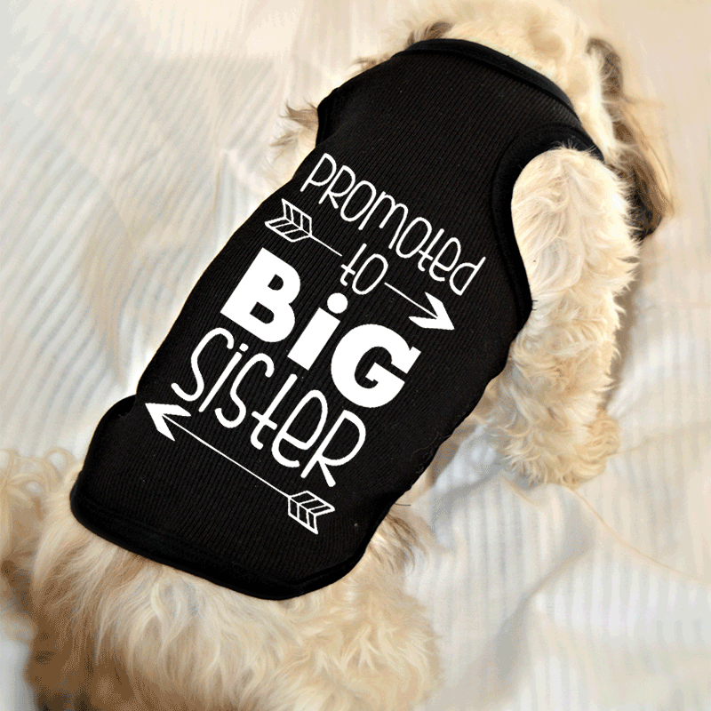 Promoted to Big Sister Dog Tank Top