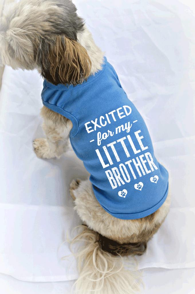 Excited for my Little Brother Gender Reveal Small Pet Dog Tank Top.
