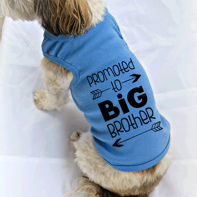 Promoted to Big Brother Dog Tank Top