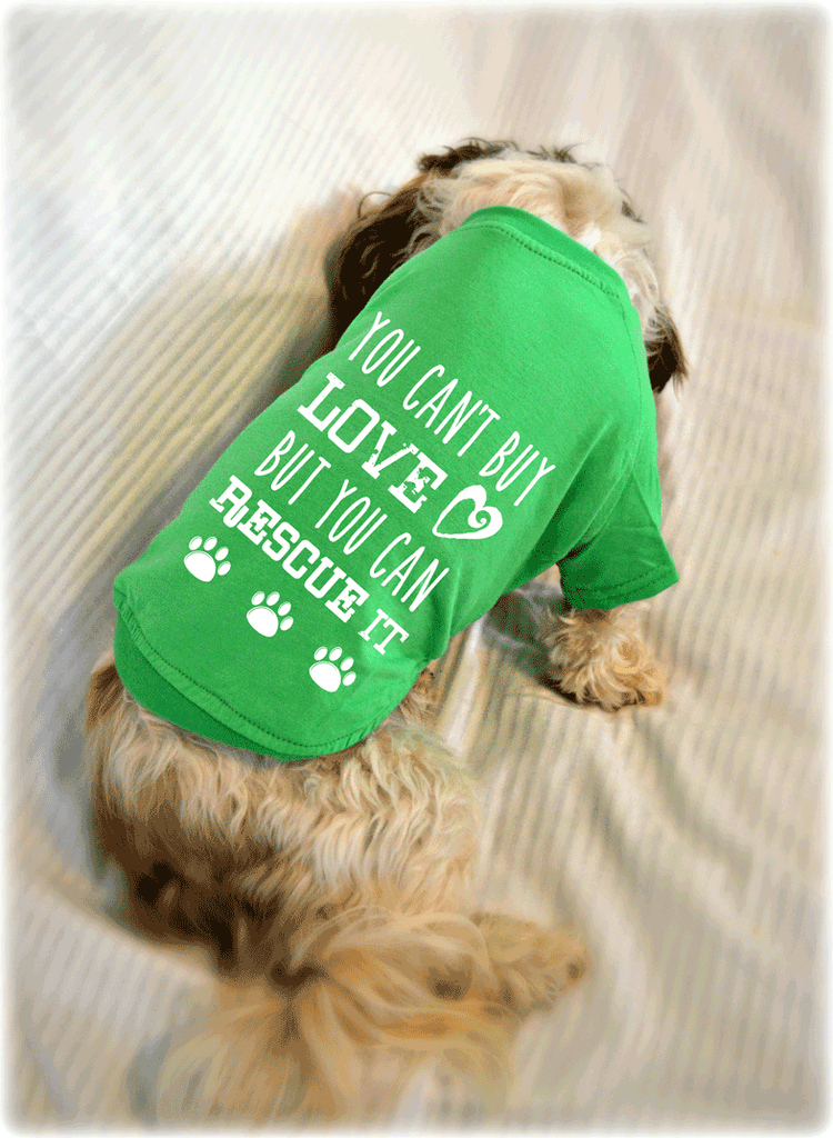 You Can't Buy Love, But You Can Rescue It Dog T-Shirt. Pet Clothes. Rescued Dog Shirt.