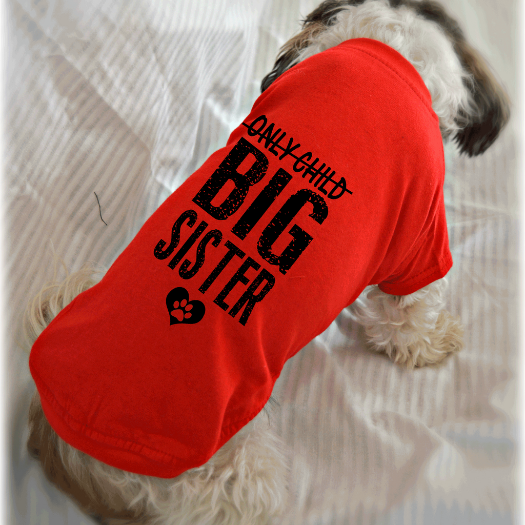Only Child Big Sister Dachshund Length T-Shirt