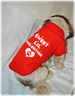 Sweet Lil Valentine Dog Polo T-Shirt for Valentine's Day
